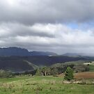 April rain shower on the hills at Wilmot by gaylene