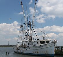Chincoteaque Fishing Vessels-1 by searchlight