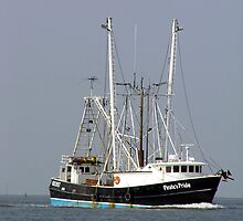 Pirates Pride - Chincoteague, VA by searchlight