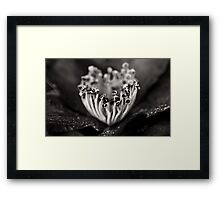 Consideration Framed Print