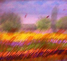 The Colorful Field, watercolor,mixed media by Anna  Lewis