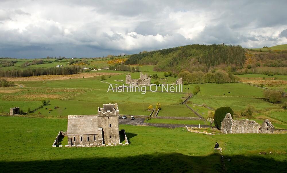 A Glimpse of Irish Sunlight by Aishling O'Neill