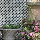 Spring Garden by DebbieCHayes