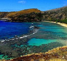 hanauma bay - honolulu by kenfarnaso