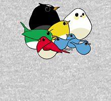 Not-so Angry Birds Mens V-Neck T-Shirt