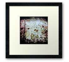 Wonderland   Framed Print