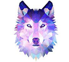 wolf by thomasvlaar01