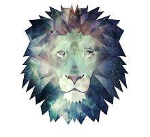 Lion by thomasvlaar01