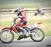 Supermoto days by Tracy Freese
