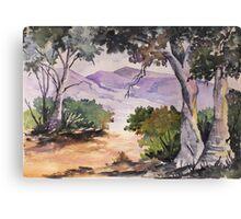 Blue gum walk Canvas Print
