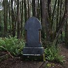 Balfour cemetary by Mikayla House