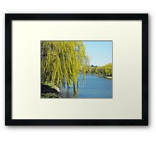 Not Weeping Today Framed Print