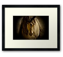 More Chief.... Framed Print
