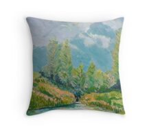Nerang River Creek , Clagiraba Throw Pillow