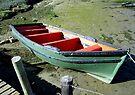 Green boat at Velddrif. by Elizabeth Kendall