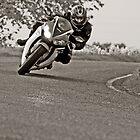 Honda CBR1000 Fireblade  by Mick Smith