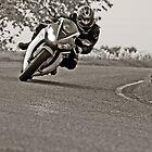 Honda CBR1000 Fireblade  by Mick Smith