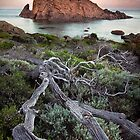 Sugarloaf Rock - Moonset by LukeAustin