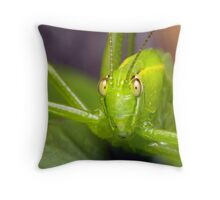 What are you looking at ? Throw Pillow