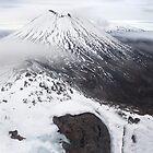 Tongariro National Park  by William  Copestake
