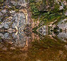 Kaleidoscope  by William  Copestake