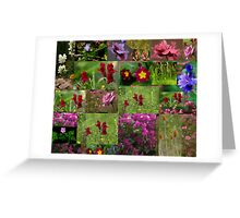 Summer Collection Greeting Card