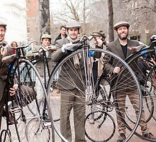 Penny farthings by Cecily  Graham