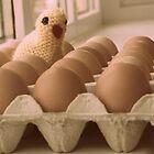 Easter Eggs by TallulahMoody