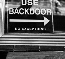 Hippies Use Back Door by Cecily  Graham
