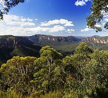 Grose Valley, Blue Mountains, NSW. by Andy Newman