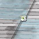 FlowerAbstrakt by RosiLorz