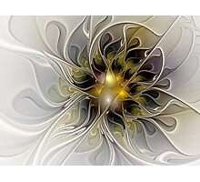 Abstract Beauty Fractal Art Photographic Print