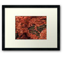 The Hidden Land – Furry Hills Framed Print