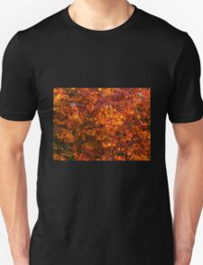Autumn tones of a Japanese Maple #2 T-Shirt