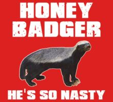 Honey Badger He's So Nasty by gleekgirl