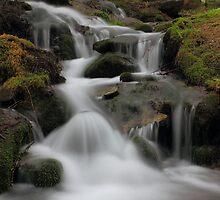 Antrona Valley, National Park by jimmylu
