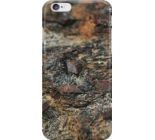 The Hidden Land – Iron Fields iPhone Case/Skin