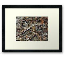 The Hidden Land – Iron Fields Framed Print