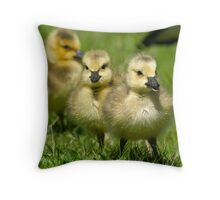 Sibling Revelry Throw Pillow
