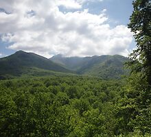 Mount LeConte by Gary L   Suddath