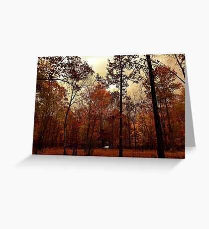 Peaceful Amber Greeting Card