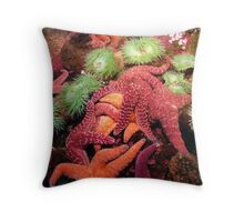 Starfish - Newport, OR Throw Pillow