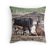 Do You Believe This? Throw Pillow