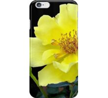 A Yellow Beauty iPhone Case/Skin