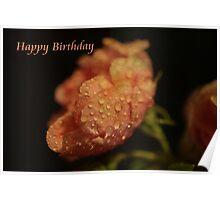 Happy Birthday ~ Vintage Birthday Card Poster