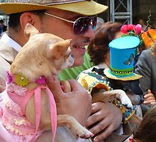 Easter Sunday on the 5th Avenue with my dogs by supergold