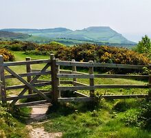 Stonebarrow ~ Dorset by Susie Peek