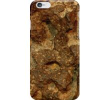 The Hidden Land – Above Meteorite Canyon  iPhone Case/Skin