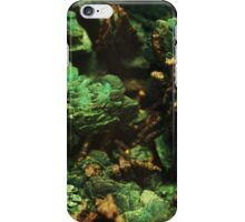 The Hidden Land - The Green Falls iPhone Case/Skin