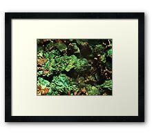 The Hidden Land - The Green Falls Framed Print